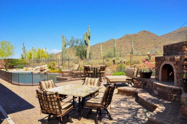 42537 N Back Creek Way, Anthem, AZ 85086 (MLS #5720802) :: Occasio Realty