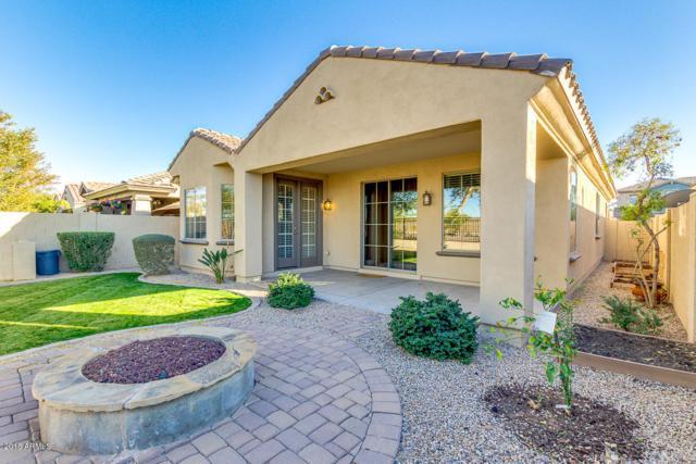 3312 E Windsor Drive, Gilbert, AZ 85296 (MLS #5720854) :: Yost Realty Group at RE/MAX Casa Grande