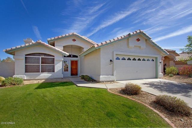 4161 E Graythorn Avenue, Phoenix, AZ 85044 (MLS #5720908) :: Yost Realty Group at RE/MAX Casa Grande