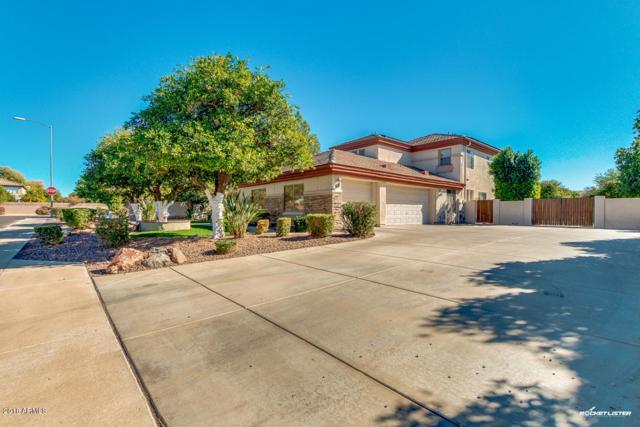 3955 E Fox Circle, Mesa, AZ 85205 (MLS #5720995) :: Yost Realty Group at RE/MAX Casa Grande