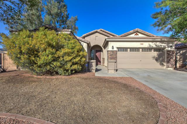 43462 W Sansom Drive, Maricopa, AZ 85138 (MLS #5721054) :: The Everest Team at My Home Group