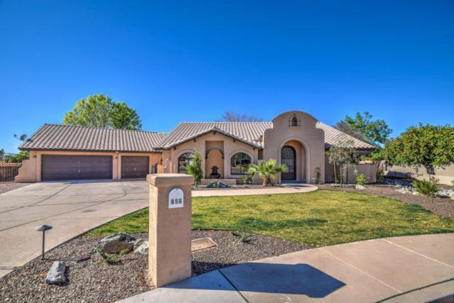 856 N Miramar, Mesa, AZ 85213 (MLS #5721083) :: Yost Realty Group at RE/MAX Casa Grande
