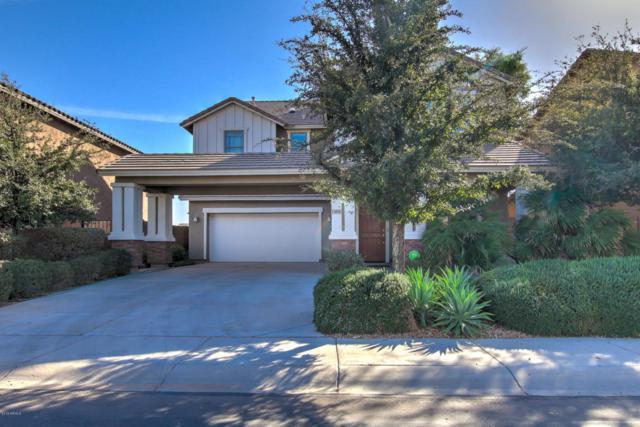 40795 W Rio Grande Drive, Maricopa, AZ 85138 (MLS #5721086) :: Yost Realty Group at RE/MAX Casa Grande