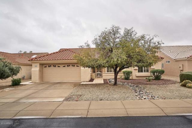 13615 W Robertson Drive, Sun City West, AZ 85375 (MLS #5721102) :: RE/MAX Excalibur