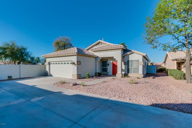 11537 W Sandsnake Court, Surprise, AZ 85378 (MLS #5721111) :: Occasio Realty