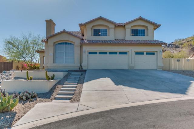 18126 W San Esteban Drive, Goodyear, AZ 85338 (MLS #5721176) :: Occasio Realty