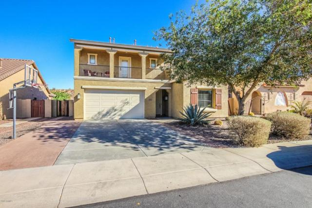 29717 N 69TH Avenue, Peoria, AZ 85383 (MLS #5721229) :: Yost Realty Group at RE/MAX Casa Grande