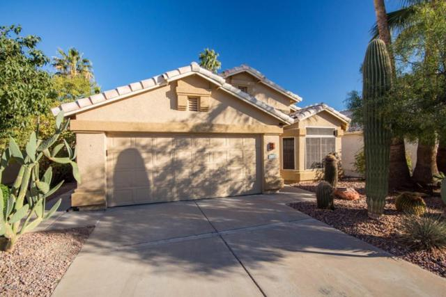 1374 E Butler Circle, Chandler, AZ 85225 (MLS #5721581) :: Kortright Group - West USA Realty