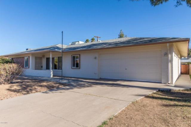 2309 W Shady Glen Avenue, Phoenix, AZ 85023 (MLS #5721601) :: Yost Realty Group at RE/MAX Casa Grande