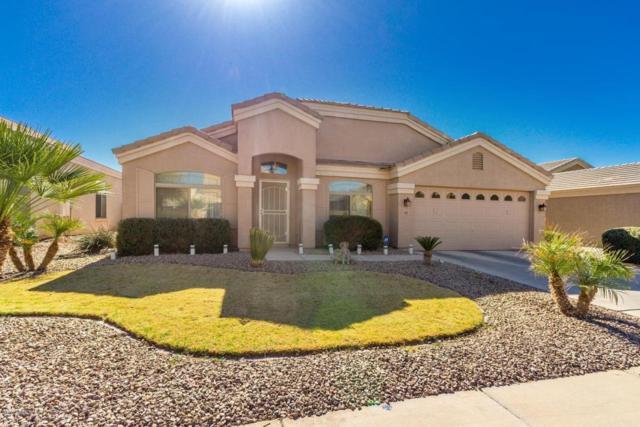 1749 E Oquitoa Drive, Casa Grande, AZ 85122 (MLS #5721654) :: Yost Realty Group at RE/MAX Casa Grande