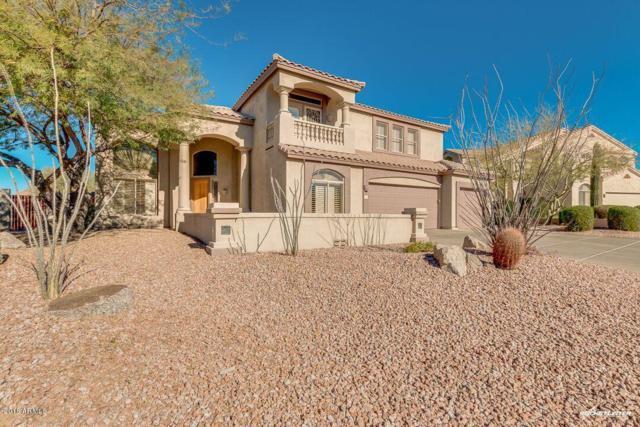 3754 N Piedra Circle, Mesa, AZ 85207 (MLS #5721758) :: The Kenny Klaus Team