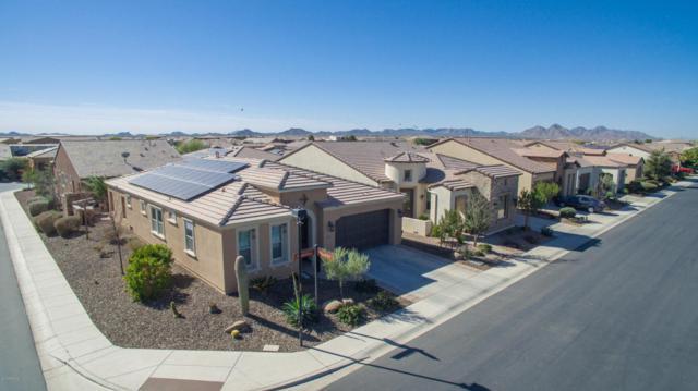 1805 E Maygrass Lane, San Tan Valley, AZ 85140 (MLS #5721781) :: Yost Realty Group at RE/MAX Casa Grande