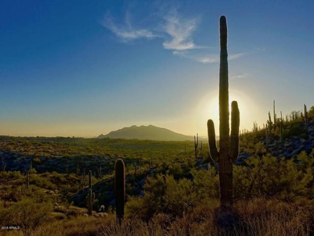 XXXXX N Father Kino Trail, Carefree, AZ 85377 (MLS #5721873) :: Arizona Best Real Estate