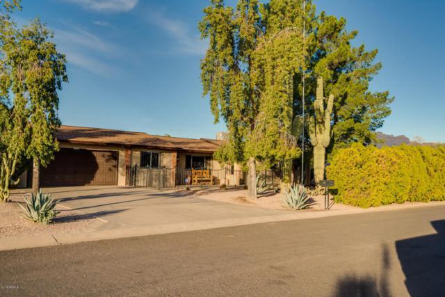 1046 E Kachina Avenue, Apache Junction, AZ 85119 (MLS #5721883) :: Yost Realty Group at RE/MAX Casa Grande