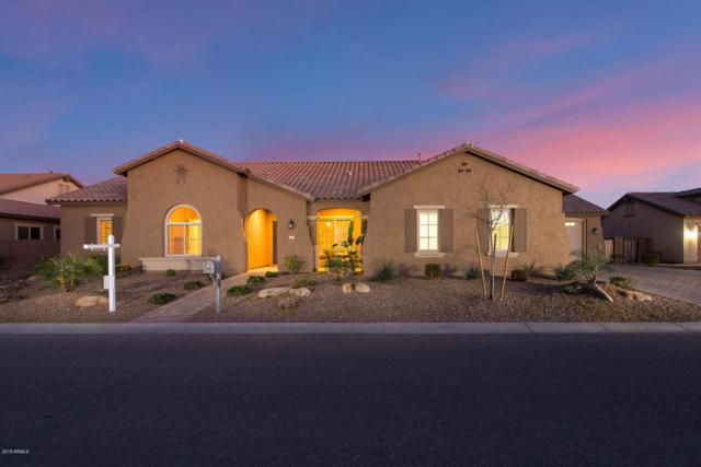 21953 E Avenida Del Valle, Queen Creek, AZ 85142 (MLS #5721957) :: Group 46:10