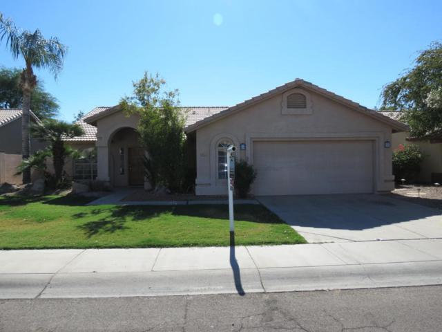 855 E Cindy Street, Chandler, AZ 85225 (MLS #5721977) :: The Everest Team at My Home Group