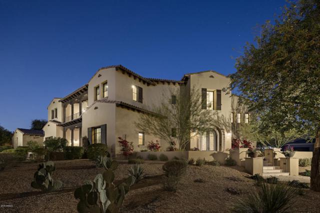 18941 N 99TH Street, Scottsdale, AZ 85255 (MLS #5722027) :: Private Client Team