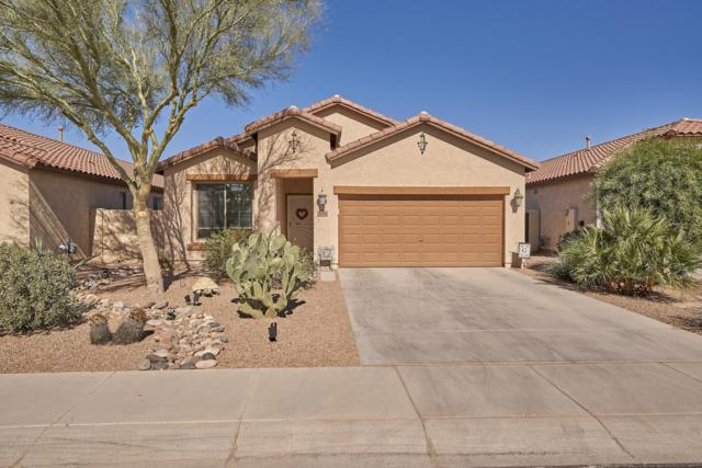 36162 W Prado Street, Maricopa, AZ 85138 (MLS #5722149) :: Yost Realty Group at RE/MAX Casa Grande