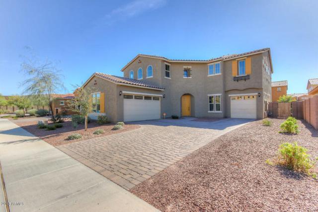 20373 E Russet Road, Queen Creek, AZ 85142 (MLS #5722212) :: Yost Realty Group at RE/MAX Casa Grande
