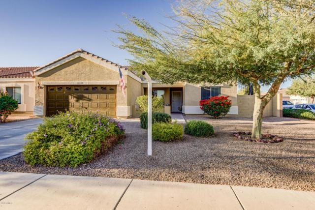 12054 W Dreyfus Drive, El Mirage, AZ 85335 (MLS #5722249) :: Yost Realty Group at RE/MAX Casa Grande
