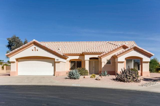 14308 W Robertson Drive, Sun City West, AZ 85375 (MLS #5722273) :: Yost Realty Group at RE/MAX Casa Grande