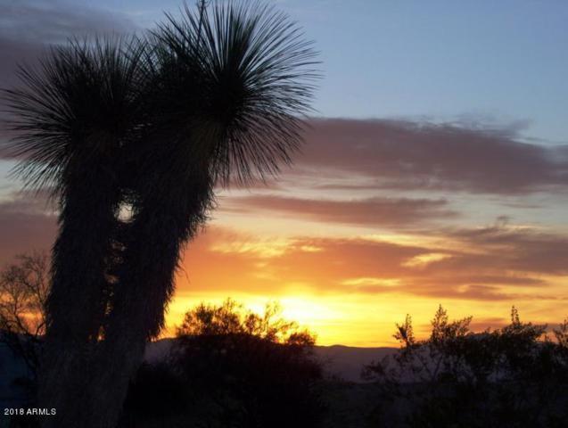 140XX E Carefree Highway, Scottsdale, AZ 85262 (MLS #5722335) :: RE/MAX Excalibur