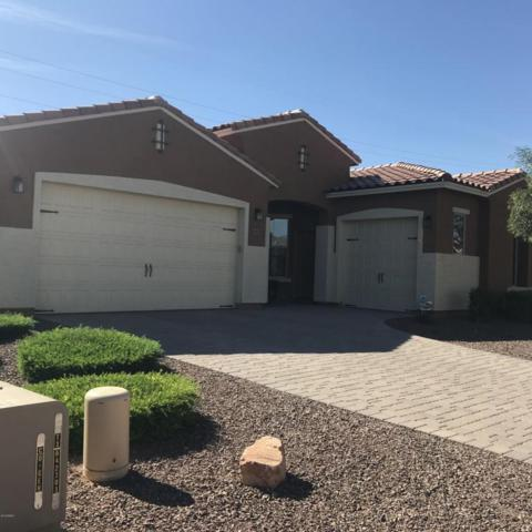18615 W Pioneer Street, Goodyear, AZ 85338 (MLS #5722388) :: Kortright Group - West USA Realty