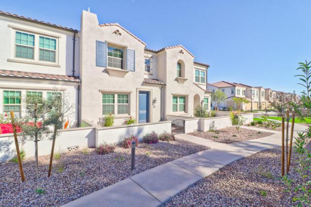 2477 W Market Place #32, Chandler, AZ 85248 (MLS #5722442) :: Revelation Real Estate