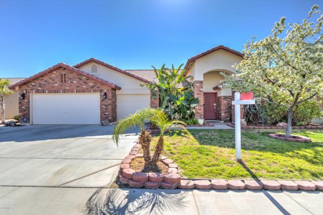 3663 E Magnus Drive, San Tan Valley, AZ 85140 (MLS #5722657) :: Yost Realty Group at RE/MAX Casa Grande