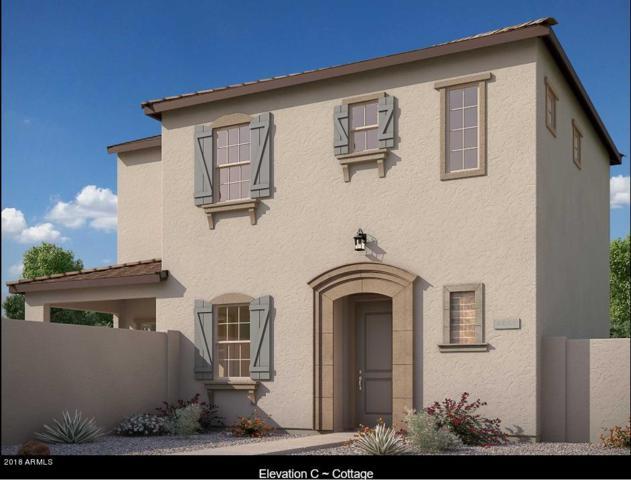 2512 N 149TH Avenue, Goodyear, AZ 85395 (MLS #5722689) :: Occasio Realty
