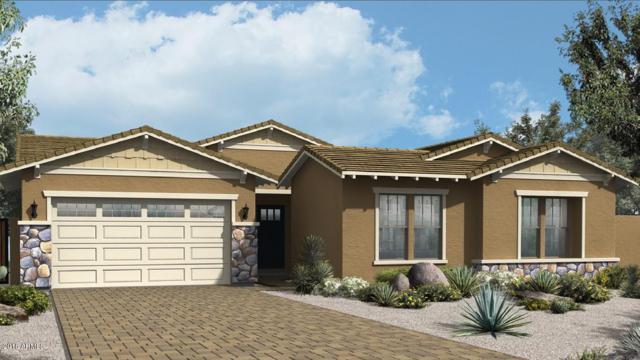 7157 E Posada Avenue, Mesa, AZ 85212 (MLS #5722855) :: Occasio Realty
