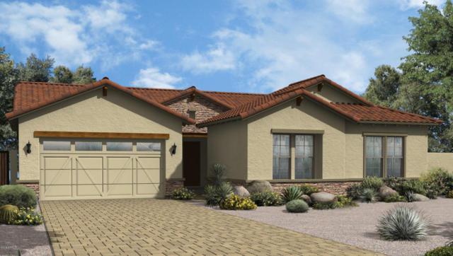 7135 E Pampa Avenue, Mesa, AZ 85212 (MLS #5722858) :: Occasio Realty