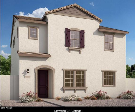 2518 N 149TH Avenue, Goodyear, AZ 85395 (MLS #5722885) :: Occasio Realty