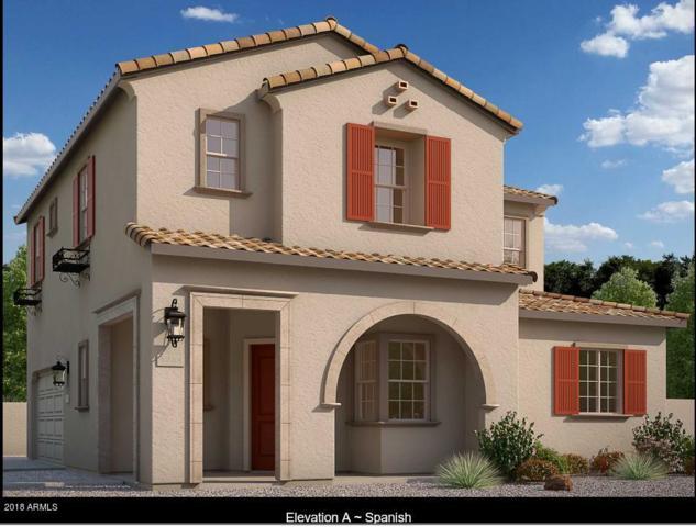 2520 N 149TH Avenue, Goodyear, AZ 85395 (MLS #5722900) :: Occasio Realty