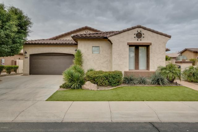 5728 S Rincon Drive, Chandler, AZ 85249 (MLS #5722973) :: The Everest Team at My Home Group