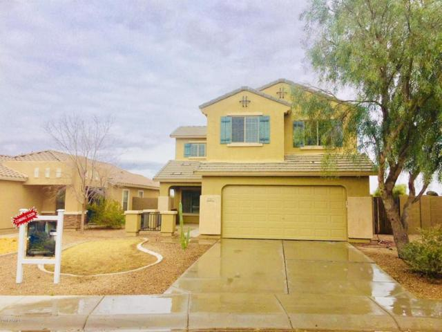 17397 N Avelino Drive, Maricopa, AZ 85138 (MLS #5723006) :: Yost Realty Group at RE/MAX Casa Grande