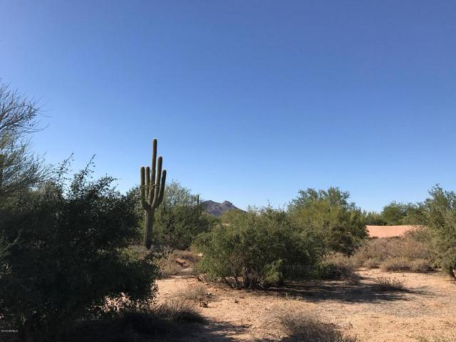 33371 N Vanishing Trail, Scottsdale, AZ 85266 (MLS #5723009) :: Lifestyle Partners Team