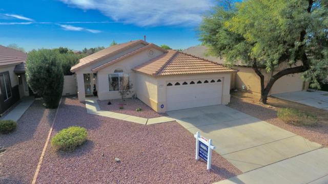 7653 W Via Montoya Drive, Peoria, AZ 85383 (MLS #5723073) :: The Laughton Team