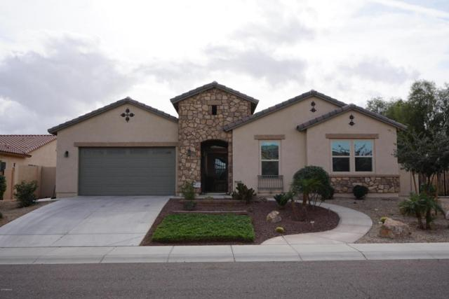 18621 W Denton Avenue, Litchfield Park, AZ 85340 (MLS #5723128) :: The Everest Team at My Home Group