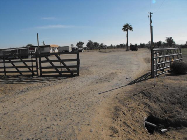 49047 W Papago Road, Maricopa, AZ 85139 (MLS #5723135) :: Yost Realty Group at RE/MAX Casa Grande