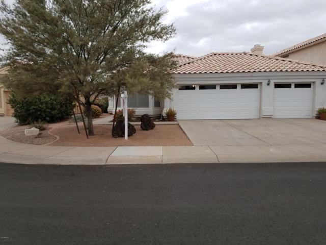 1719 E Commonwealth Circle, Chandler, AZ 85225 (MLS #5723165) :: My Home Group