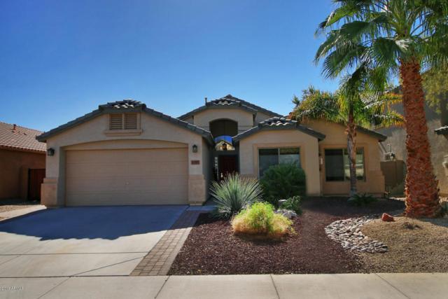 1355 E Baker Drive, San Tan Valley, AZ 85140 (MLS #5723206) :: Yost Realty Group at RE/MAX Casa Grande