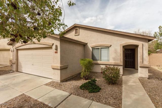 1626 E Desert Rose Trail, San Tan Valley, AZ 85143 (MLS #5723231) :: Yost Realty Group at RE/MAX Casa Grande