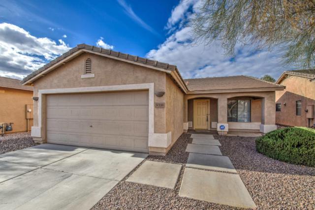 30116 N Sunray Drive, San Tan Valley, AZ 85143 (MLS #5723335) :: Yost Realty Group at RE/MAX Casa Grande