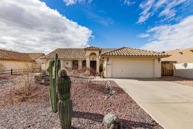 8939 E Shasta Drive, Gold Canyon, AZ 85118 (MLS #5723426) :: Revelation Real Estate