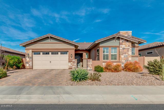 3244 E Creosote Lane, Gilbert, AZ 85298 (MLS #5723445) :: Occasio Realty