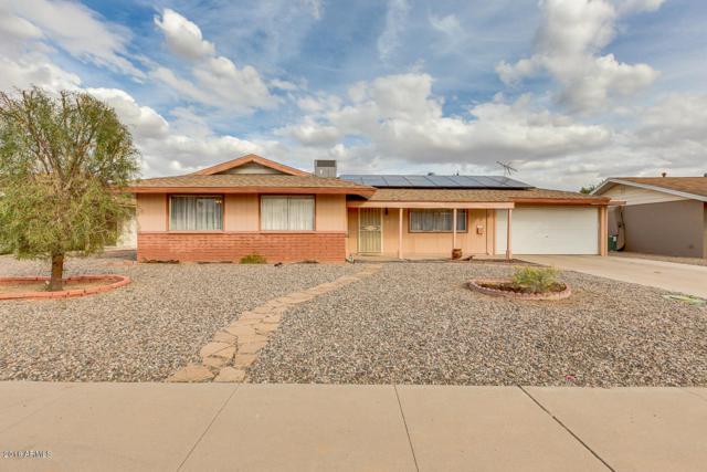 11819 N 105TH Avenue, Sun City, AZ 85351 (MLS #5723448) :: Brett Tanner Home Selling Team