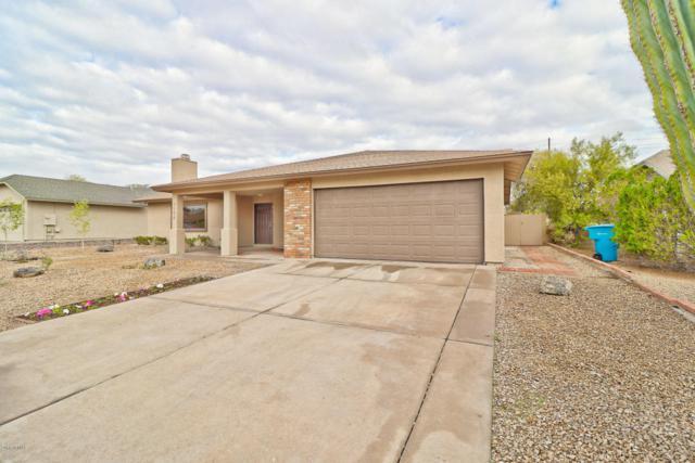 4506 E Cheyenne Drive, Phoenix, AZ 85044 (MLS #5723526) :: Occasio Realty