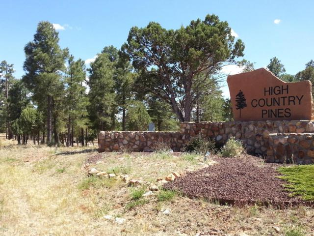 3471 Fence Post Drive, Heber, AZ 85928 (MLS #5723632) :: The Wehner Group
