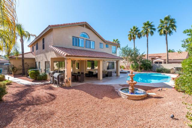 5804 E Sandra Terrace, Scottsdale, AZ 85254 (MLS #5723648) :: Occasio Realty
